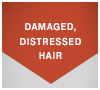 DAMAGED, DISTRESSED HAIR
